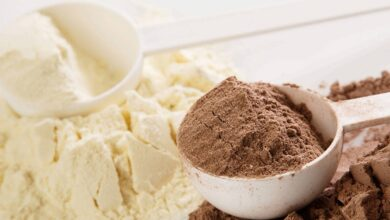 What Are Some Of The Best Protein Powders?